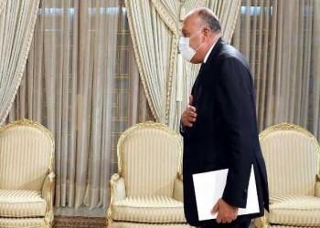 مصر اليوم - وزير الخارجية المصري ينقل رسالة شفهية من الرئيس السيسى إلى رئيس جمهورية تونس