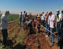 مصر اليوم - سيد خليفة يكشف تفاصيل أفضل مشروع لتكيف المحاصيل مع التغيرات المناخية